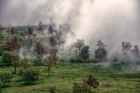 Dense fog crawling across green landscape of mountainous Karabakh photo