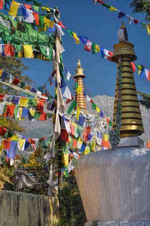 ta: Colorful buddhist prayer flags in town of  Dharamshala, Himachal Pradesh, India
