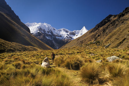 Horses grazing in valley between high mountain peaks in Peruvian Andes