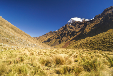 alpamayo: Picturesque valley between high mountain peaks in Peruvian Andes