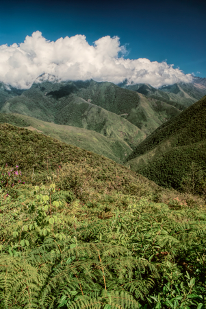 Picturesque green valley in Andes mountains in Bolivia on Choro trek Imagens