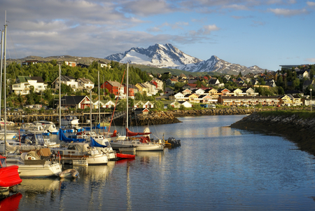 Picturesque view of Narvik and its houses at the foot of a mountain with view of the port