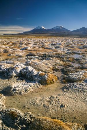 nevado: Scenic view of bolivian volcanoes, highest peaks in Sajama national park in Bolivia