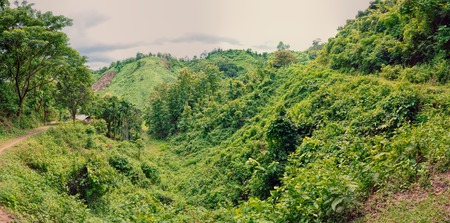 Scenic panorama of green valley in Bangladesh photo
