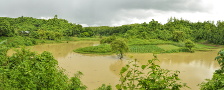 River flooding green fields in Bangladesh photo