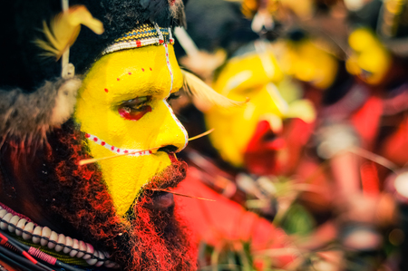 pierced: Hagen show, Papua New Guinea - circa August 2015: Native bearded man with yellow colour on face and red on body poses with pierced nose during Hagen show, Papua New Guinea. Documentary editorial.