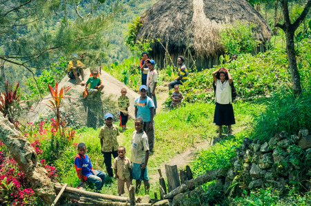 dani: Dani circuit, Indonesia - September 2015: Native children stand near wooden house in beautiful greenery in beautiful region in Dani circuit near Wamena, Papua, Indonesia. Documentary editorial. Editorial