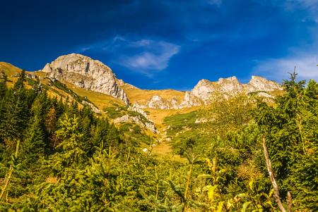 Greenery and rocky tops in Belianske tatry in High Tatras in Slovakia.