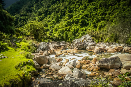 Photo of rich greenery surrounding floating river with large stones in El Choro Trek in Bolivia, South America. Banco de Imagens