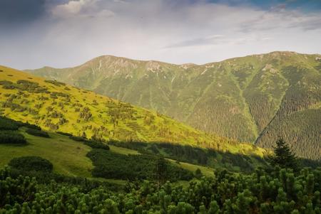 ruzomberok: Photo of greenery and mountains near Cutkovska dolina in Ruzomberok, Slovak Republic.