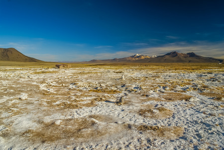 Lonely wilderness with mountains in distance in Parque Nacional Sajama in Bolivia, South America.