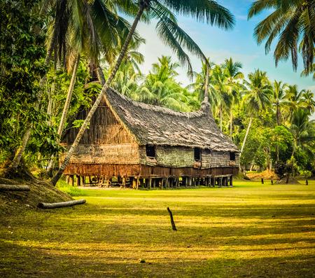 Großes Haus Aus Stroh Und Holz Von Viel Grün In Palembe, Sepik In Papua