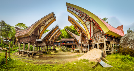Photo of typical tongkonans with boat-shaped and saddleback roof in village in Toraja region in Sulawesi, Indonesia.