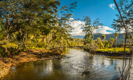 Nuova Guinea: Wooden bridge on river in rich greenery in Trikora, Papua, Indonesia. In this region, one can only meet people from isolated local tribes. Archivio Fotografico