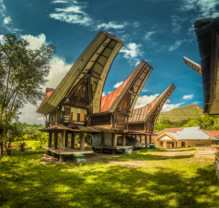 Photo of tongkonans, traditional ancestral houses with carvings and colourful ornaments in Sangalla, Toraja region in Sulawesi, Indonesia.