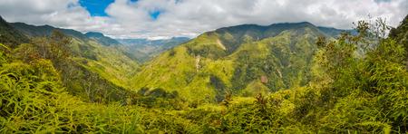 산과 푸르 푸 뉴 기니 Kubor 범위 Digne에서 녹지. 이것은 거의 원격 위치이며, 사람들이 거의 방문하지 않습니다. 스톡 콘텐츠
