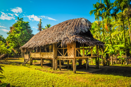 Photo of simple house made of straw and bamboo surrounded by greenery in village at Ramu river in Papua New Guinea.