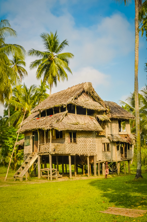 a house with a straw: Large simple house made of wood and straw surrounded by greenery in Avatip, Sepik river in Papua New Guinea.