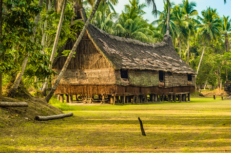 a house with a straw: Large house made of straw and wood surrounded by palms in Palembe, Sepik river in Papua New Guinea. In this region, one can only meet people from isolated local tribes. Stock Photo