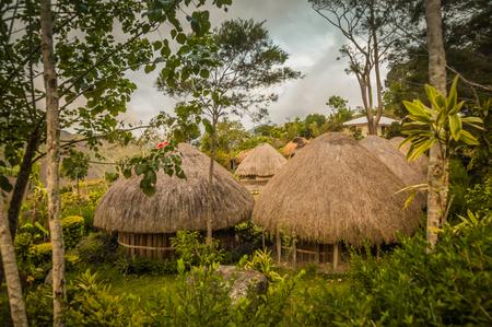 ダニ回路ワメナ、パプア、インドネシアの近くの村で藁葺き屋根の民家。