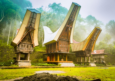 Photo of three ancestral houses with saddleback roofs in morning fog in Toraja region, Sulawesi in Indonesia. Stock Photo