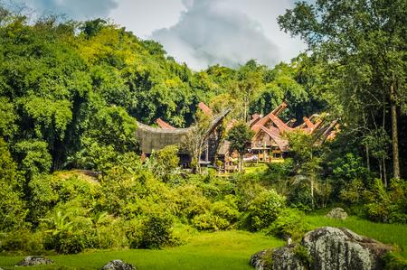 toraja: Photo of traditional tongkonans and surrounding greenery  and rocks in Toraja region in Sulawesi, Indonesia.