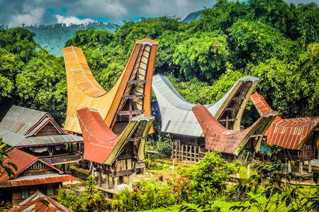 Photo of traditional ancestral houses, tongkonans, with large boat-shaped and saddleback roofs in Toraja region in Sulawesi, Indonesia. Stock Photo