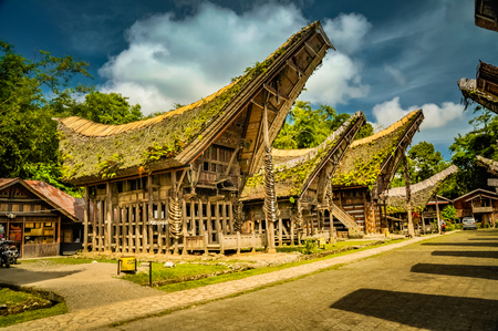 Photo of traditional wooden tongkonans with large saddleback roof covered with plants in Kete Kesu, Toraja region in Sulawesi, Indonesia.