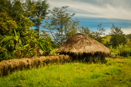 a house with a straw: Photo of greenery and small house made of wood and straw in Trikora, Papua, Indonesia. In this region, one can only meet people from isolated local tribes. Stock Photo