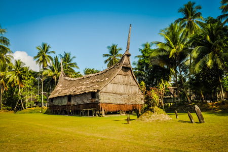 Large house made of straw and wood surrounded by palms on sunny day in Palembe, Sepik river in Papua New Guinea. In this region, one can only meet people from isolated local tribes. Stock Photo