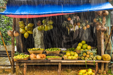 Rangamati, Bangladesh - circa July 2012: Native man in checkered shirt stands in fruit stall with many kinds of fruit in rain in Rangamati, Bangladesh. Documentary editorial.