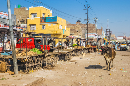 freely: Rajasthan - circa December 2011: Photo of marketplace in Rajasthan. Animals walk freely through the market. Documentary editorial.