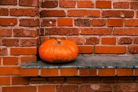 Orange pumpkin on a windowsill of a brick building, Lodz, Poland, Europe