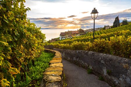 Lavaux, Switzerland: Lake Geneva and traditional swiss hauses during sunset seen from Lavaux vineyard hiking trail in Canton Vaud Banco de Imagens