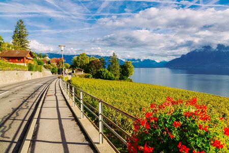Lavaux, Switzerland: Motorway over the Lake Geneva among Lavaux vineyard tarraces in Canton of Vaud, Europe Banco de Imagens