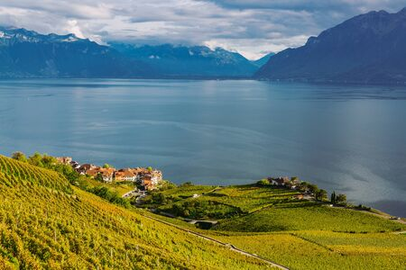 Lavaux, Switzerland: Lake Geneva and the Swiss Alps landscape seen from Lavaux vineyard tarraces in Canton of Vaud, Europe