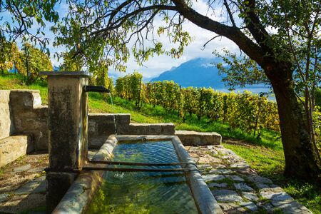 Lavaux, Switzerland: Fresh water source on hiking trail among Lavaux vineyard tarraces in Canton of Vaud, Europe