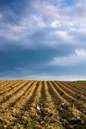 plough land: Ploughed Agricultural Landscape Stock Photo