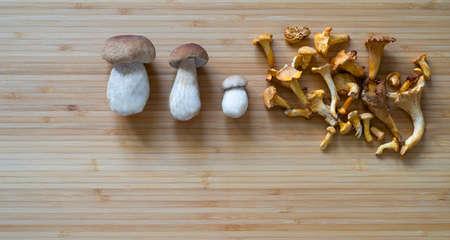 mushrooms Stock fotó