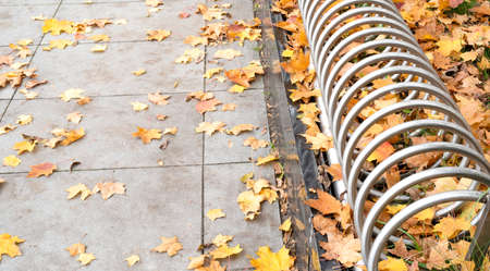 empty bicycles rack among autumn leaves