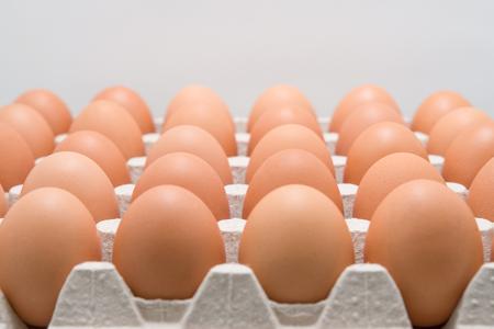 Kühlschrank Ei : Behälter mit eiern im kühlschrank gemalte gefühlnahaufnahme stock
