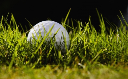 Golfball in high grass
