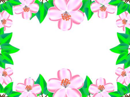 between: Cherry blossom between green leaves