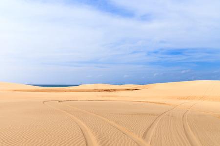 cape verde: Car prints in sand, Boavista - Cape Verde