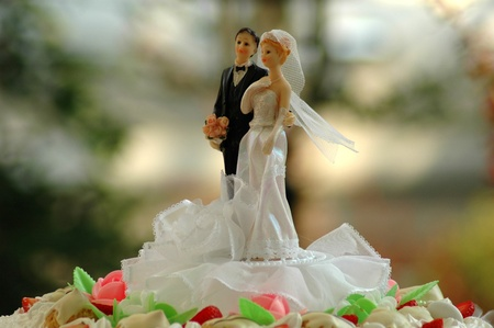 Bride and groom on top of wedding cake photo