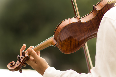 a violinist makes his performance during a wedding