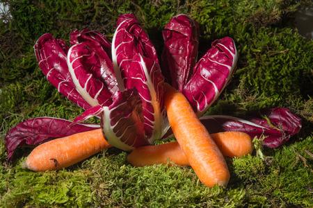 appetiser: red salad