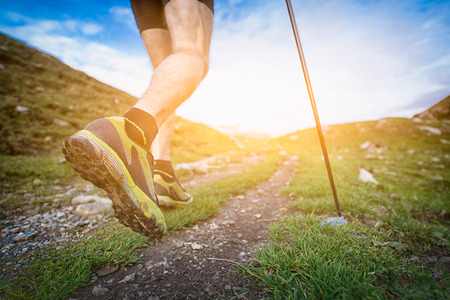 walking trail: Nordic Walking