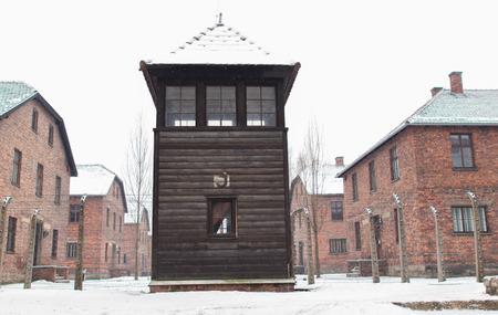 annihilation: The Auschwitz-Birkenau State Museum Editorial