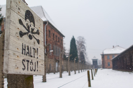 gaol: The Auschwitz-Birkenau State Museum Editorial